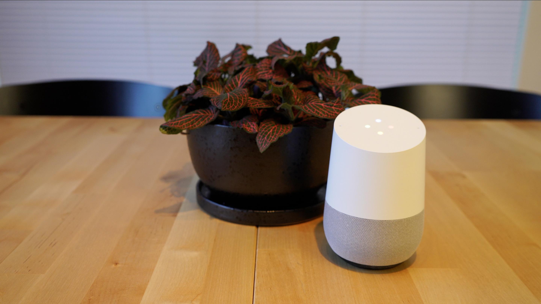 Google Home and a decorative, modern pot.